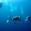 Divers carry a PMEL-MAPR sensor to survey shallow vent sites in the Caribbean