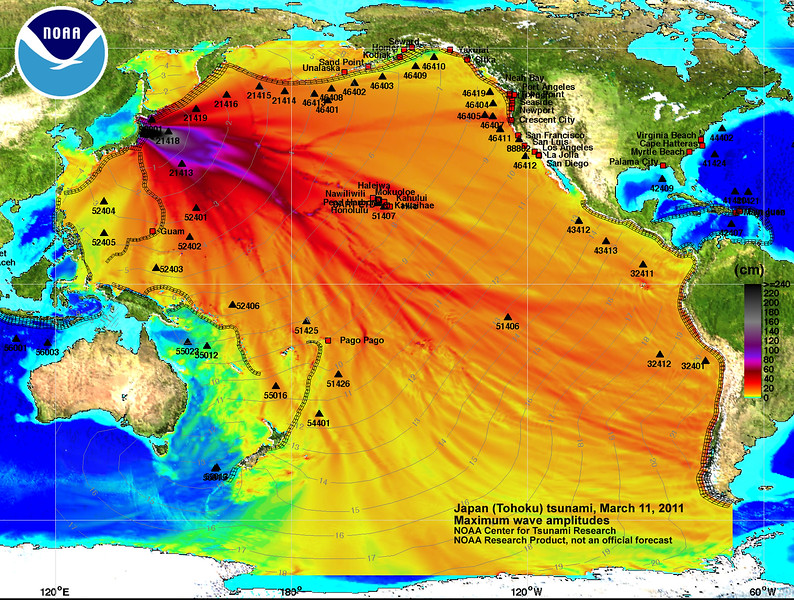 Tsunami wave amplitudes for March 11, 2011 Japan tsunami calculated with the MOST tsunami forecast model