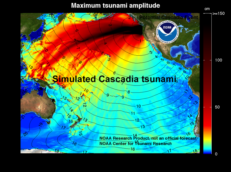 Maximum wave heights for a Cascadia tsunami simulated with the MOST tsunami model
