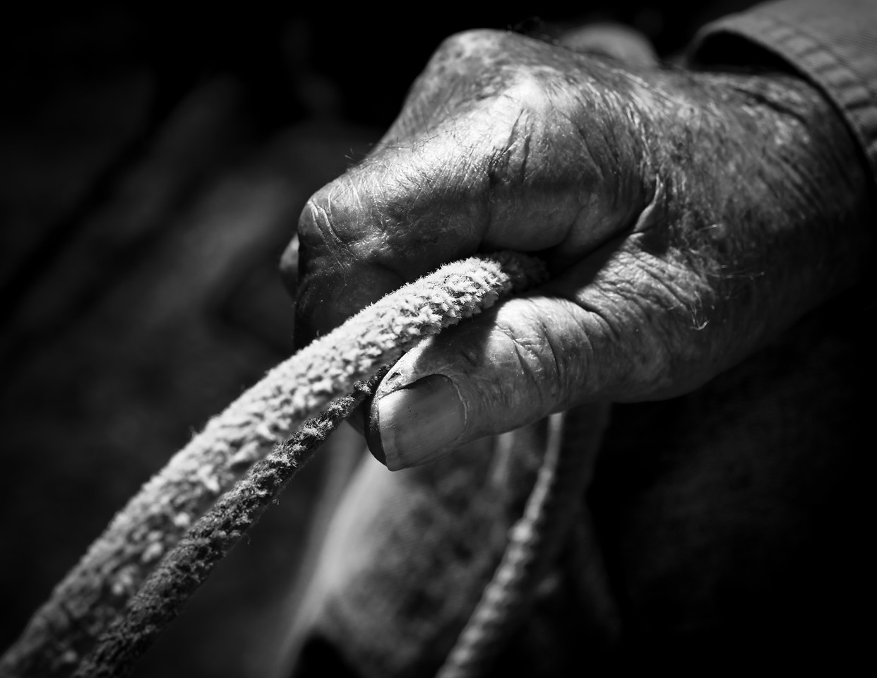 "Ernesto ""Chapo"" Valenzuela, now 97, holds the rope he used for the last 20 years of his life as a cowboy.  A  rancher and cowboy for over 60 years, his knowledge of grazing made him a mentor to many in the valley"