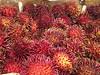 Exotic Tropical Fruit RAMBUTAN