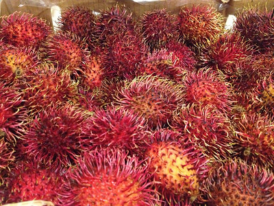 Exotic Tropical Fruit RAMBUTAN