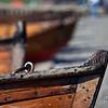 Row boat bows at Windermere