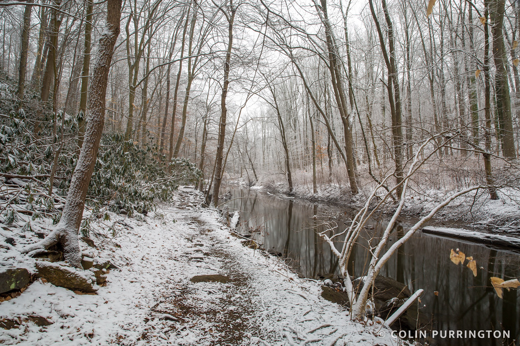 Trail along Crum Creek