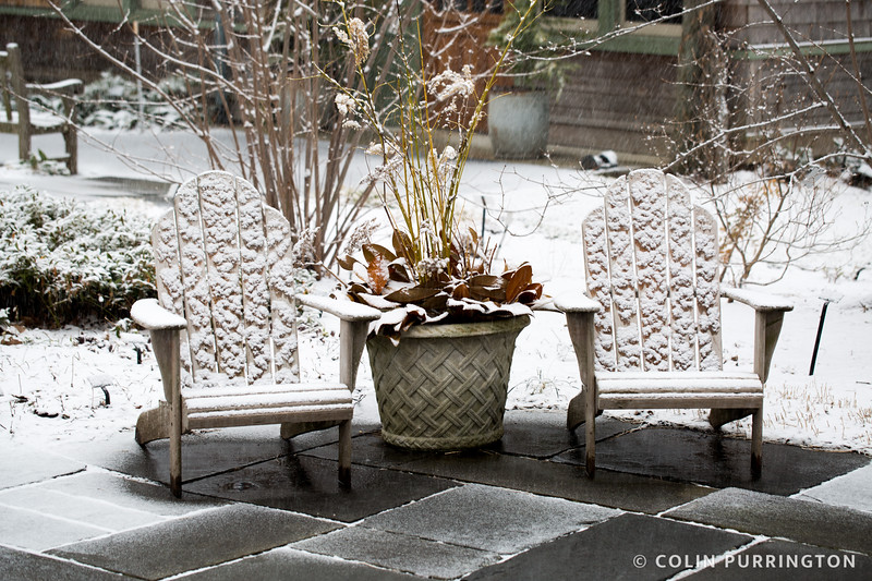 Adirondack chairs covered in snow