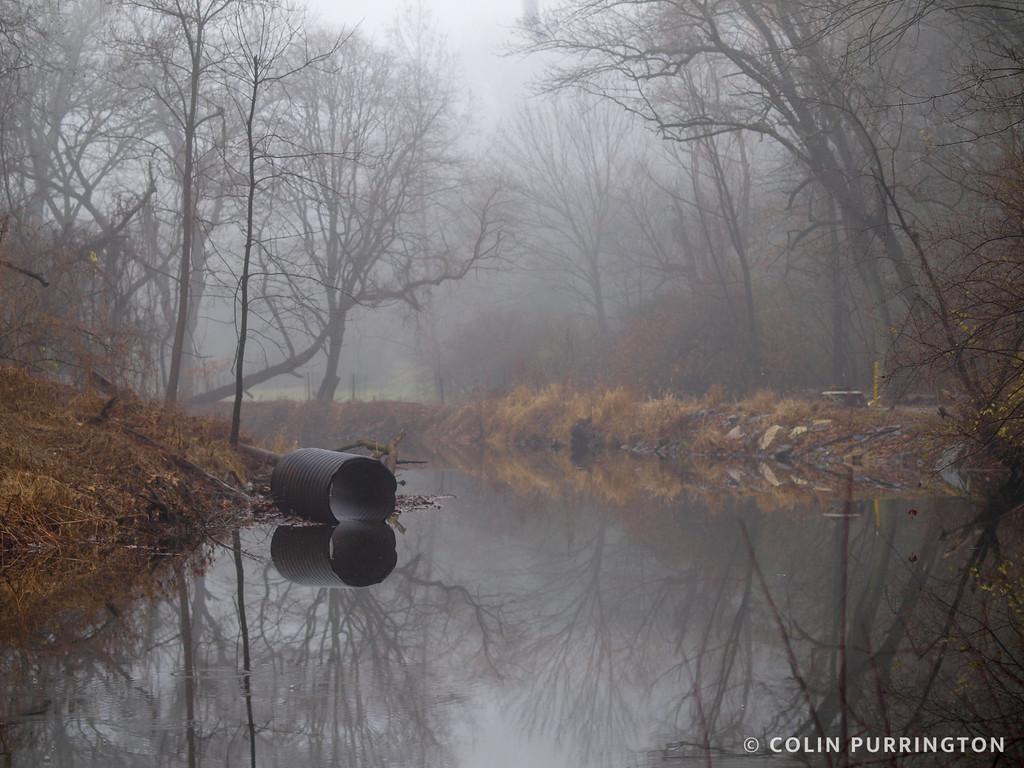 Sewage pipe in Crum Creek