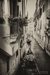 Goldalas through the canals