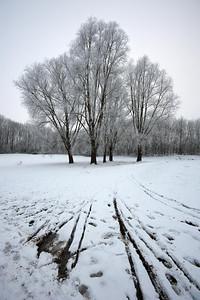 50404-Winter-1920