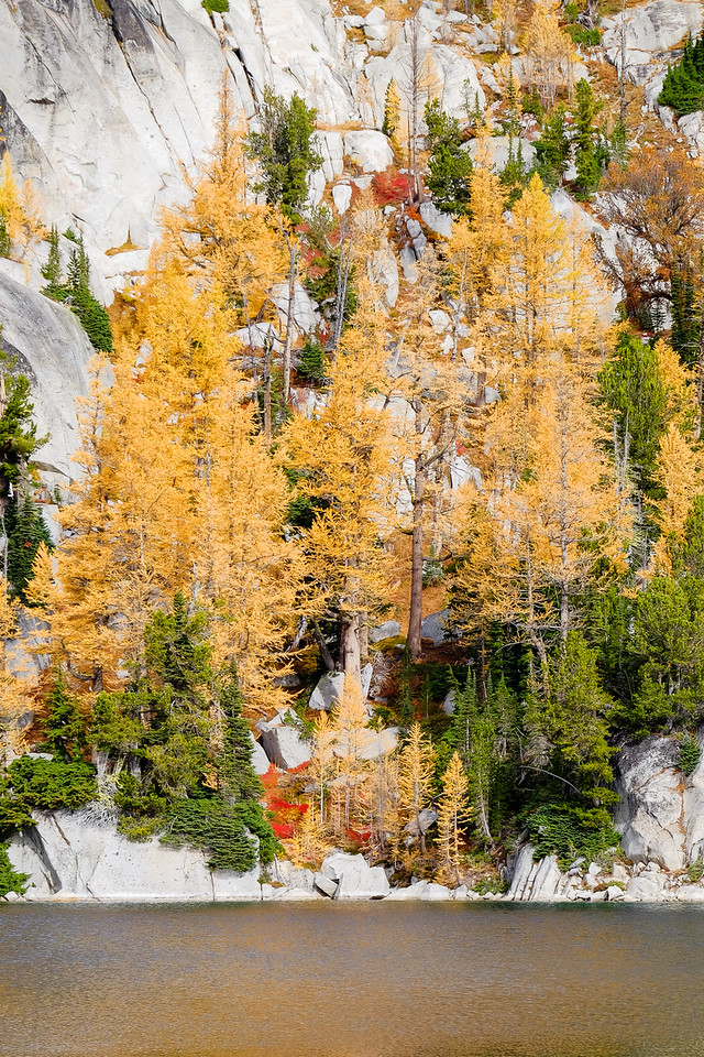 Fall colors in the Enchantments