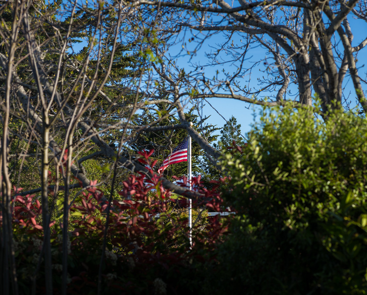 Late Afternoon Flag