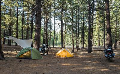 Tarp, tents, and bikes