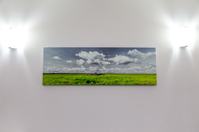 South Alligator Wetlands - Canvas - 16 x 48