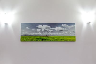 South Alligator Wetlands - Canvas - 16 x 48