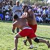 Arshi vs Tauo