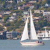 A sailboat navigates Raccoon Strait in front of Tiburon.