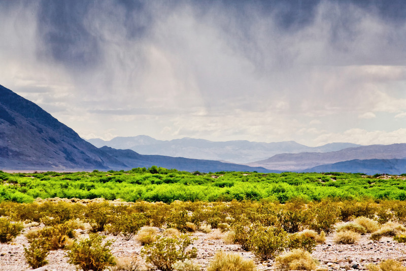 View east from West Side Road near Johnson Canyon, Death Valley.