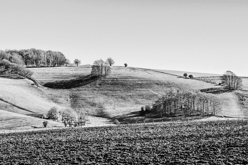 Hellscombe in Late Winter BW