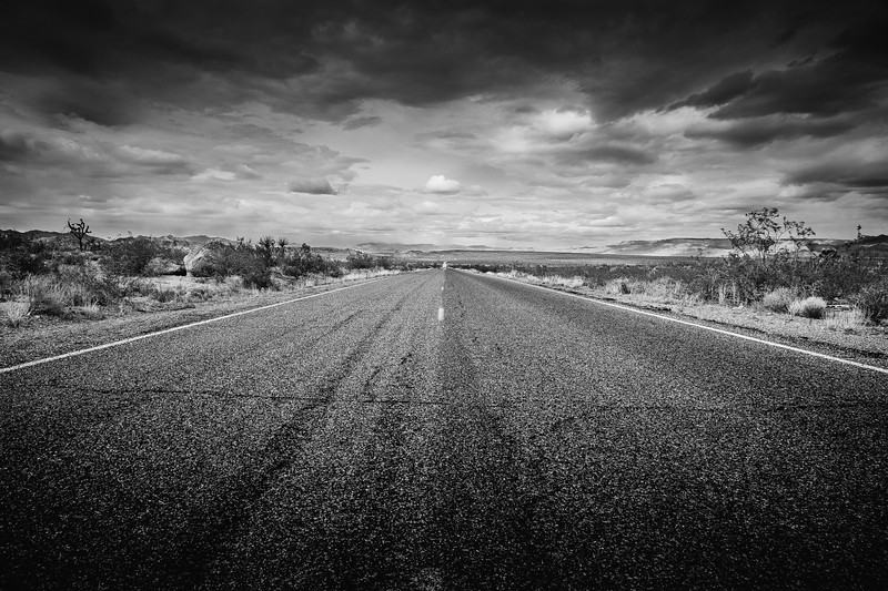 The Open Road BW