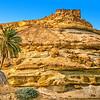 Limestone jebel with palm tree