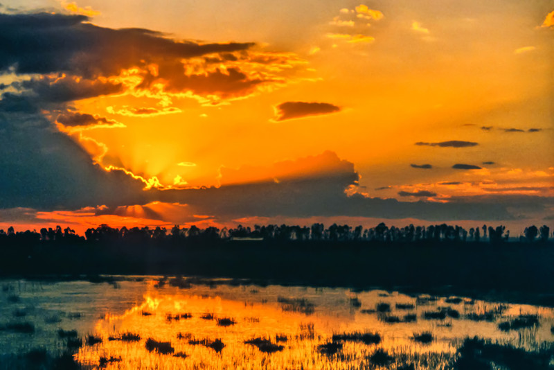 Delmas Sunset