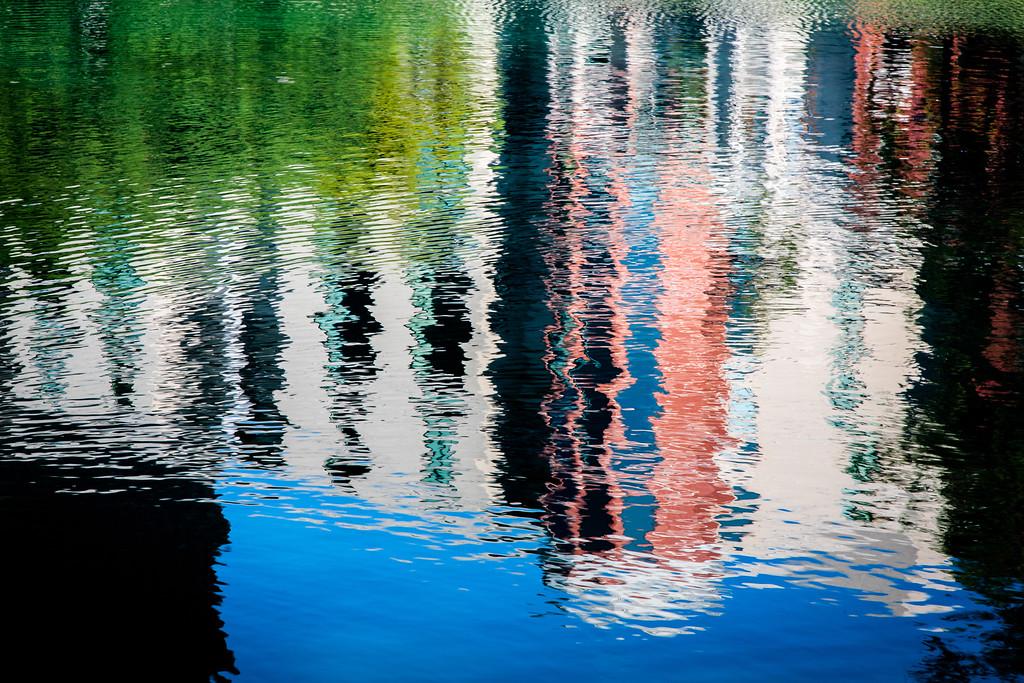 Post Oak Reflection
