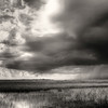 A thunderstorm rolls across the Francis S. Taylor Wildlife Management Area-Water Conservation Area 3B of the Florida Everglades.