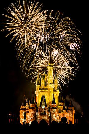 Cinderella's Castle Yellow