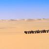 Dune Shaking