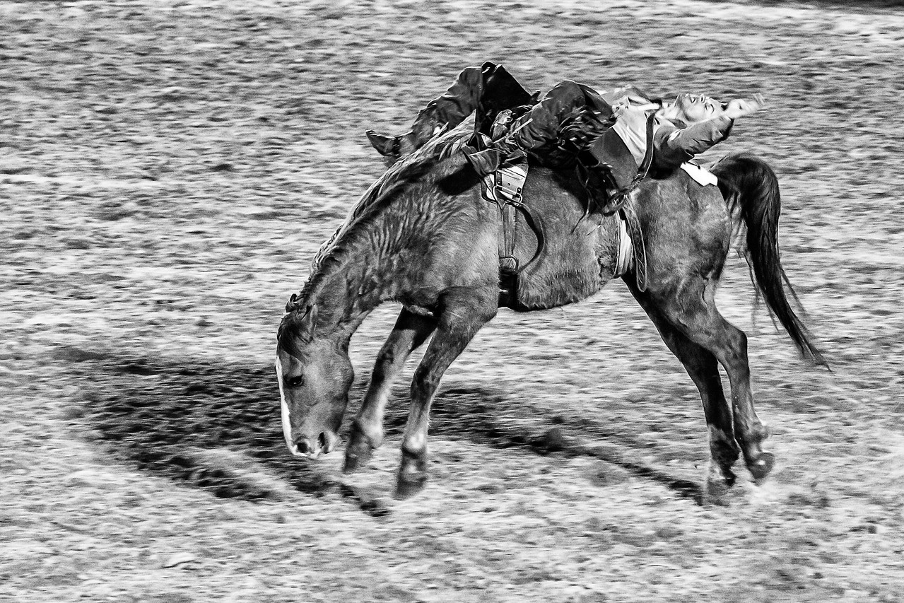 Rough Ride BW
