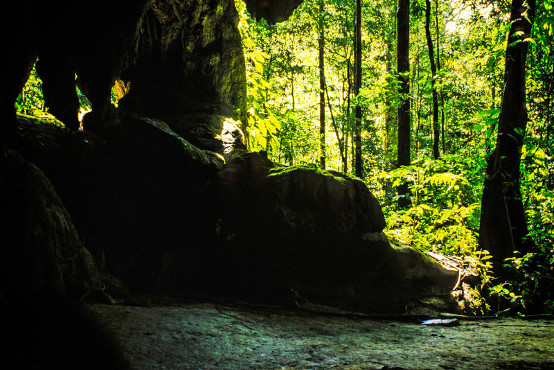 I'd hesitate to say this was the exit I took to Clearwater Cave but that's where it falls in my sequence of images. Mulu, 1989.