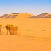 Calanscio Sand Sea 2