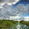 Firebreak canal in the Francis S. Taylor Wildlife Management Area-Water Conservation Area 3B of the Florida Everglades.