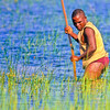 Fisherman in the Okavango Delta, Botswana. The fishermen would work in pairs. One would beat the surface of the water with his spear to drive the fish towards his partner who would attempt to spear anything that swam by.
