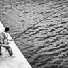 Maltese Angler BW
