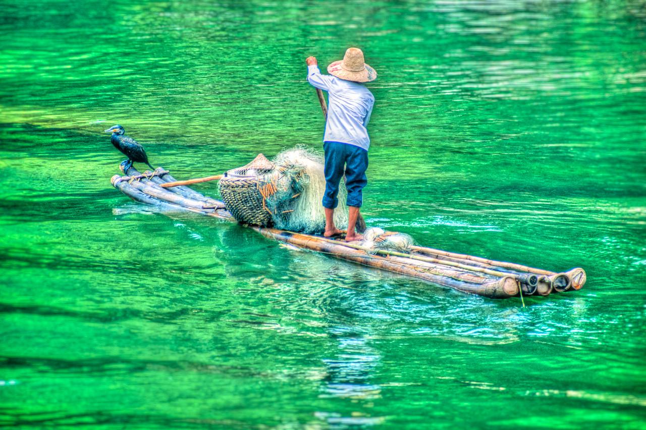 Cormorant Fisherman 2