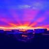 Bothaville Sunset 3