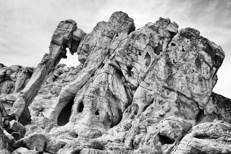 Trail around Elephant Rock at East Entrance Station.  The Elephant Rock.