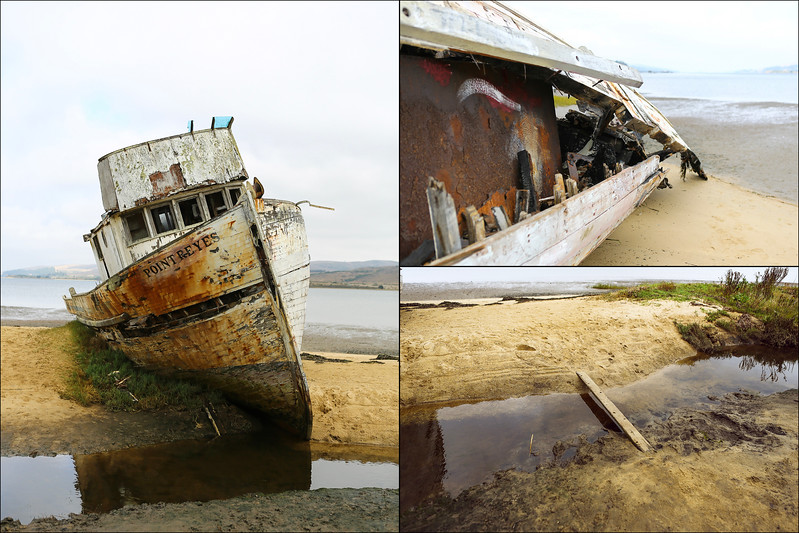 S.S. Point Reyes, Inverness
