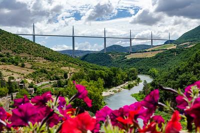 Pont de Millau et Fleurs
