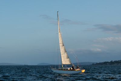Serica welcomes Dorade to Hobart.