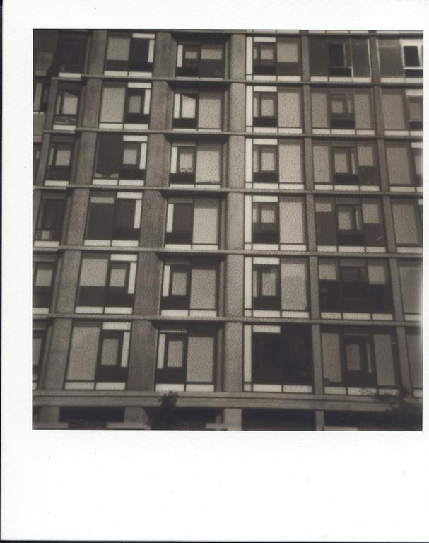 Chelsea Windows