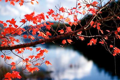 eagle-lake-red-leaves