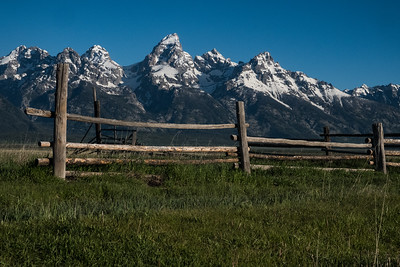 Mormon Row Fence