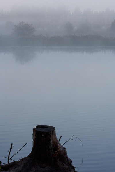 Our last morning, I was greeted by a fog hovering over the river.  Not only did it look great, but I thought maybe I could catch some wildlife.  I did see something small swimming across, but could get a picture.  I like what I did get though.