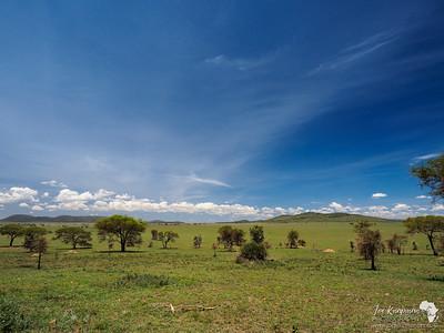 Central Serengeti Views