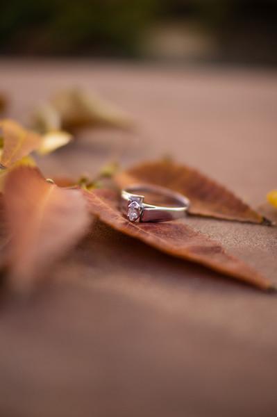 J&T Engagements-00201