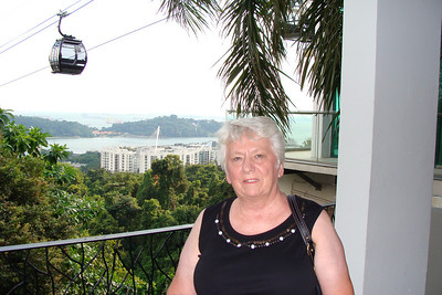 After a great day - it was off to the top of Mount Faber to visit Mount Faber park and see some great views of the Singapore skyline and surrounding ocean.    This is just a few moments after Mom found out she would be taking the Cable Car over to Sentosa