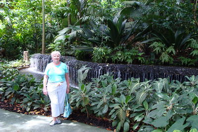 It was a GREAT 1/2 day at the Singapore Botanical Gardens.  This place is really really nice and my Mom was VERY impressed.  She said it was one of the most impressive gardens she has ever visited.  Now...if only someone could turn the temperature down a bit....