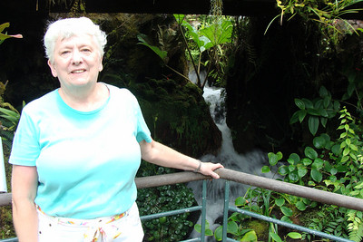 """This was taken inside the Cool House.  While most gardens must have a """"hot house"""" to show the plants from warmer climates, the Singapore Botanical Gardens must have a """"cool house"""" to show the plants from the upper elevations  It was a GREAT place to cool off too   :)"""