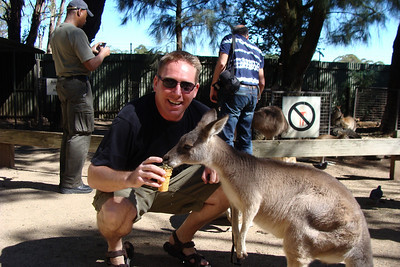 Seriously....Australia is full of kangaroos and a million different kinds of animals that can kill you.  First stop - the Featherdale Wildlife Park  Why?  So that I can go and play with a bunch of kangaroos!